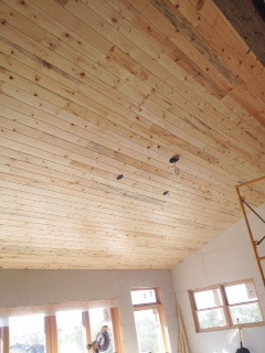 Pine Planks On Vaulted Ceiling Lucky Dog
